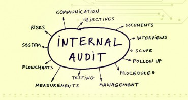 Internal Audit Function